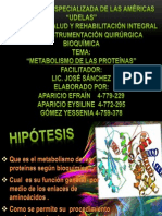 metabolismo de la proteinas  grupo 4