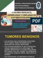 Tumores Benignos Final Ultmo