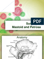 Surgery of Mastoid and Petrosa
