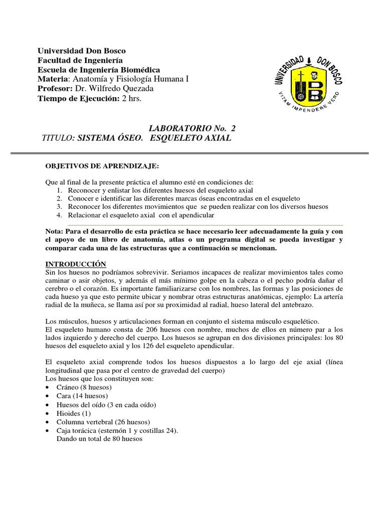 Lujoso Fracturas óseas Libro De Anatomía Y Fisiología Para Colorear ...