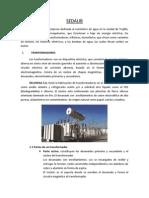 Informe de SEDALIB