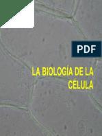 Biologia de La Célula