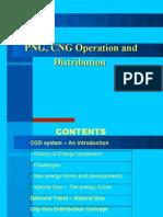 56616674 City Gas Distribution