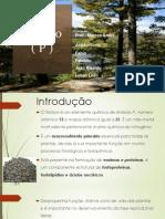 Adubos - Fosforo