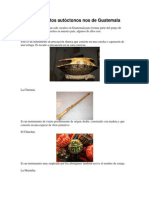 Instrumentos Autóctonos Nos de Guatemala