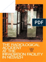 The Radiological Accident at the Irradiation Facility in Nesvizh