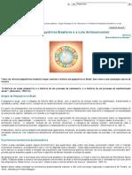 4- A Reforma Psiquiatrica Brasileira e a Luta Antimanicomial