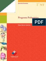 201308281105270 programa pedagogico nt1