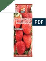 Paquete Tecnologico Para La Producción de Fresa