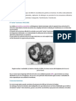 Cromosoma Bacterino y Replicacion