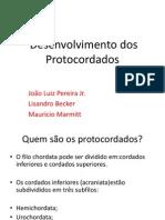 Embriologia - Seminario Desenvolv. Protocordados