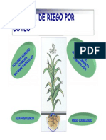 G04 - Diseño Agronomico y Planificación [Modo de Compatibilidad]
