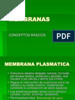 seminariolunes26demarzo2012membranasvmcd-120326123121-phpapp01