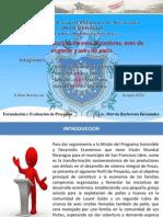 Presentación Final-Formulación y Evaluación de Proyectos