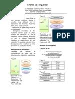 Analisis de Aminoacidos Por Tlc-Informe 1