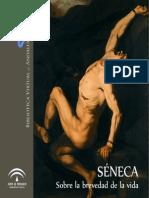 La Brevedad de la Vida de Seneca
