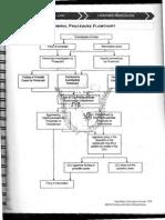 Criminal Procedure Flow Chart