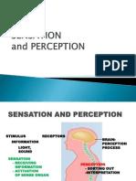23531_sensation+and+perception+lec