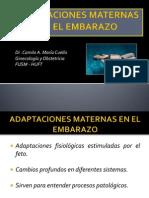 Adaptaciones Maternas en El Embarazo - 2014