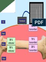 PP Ultrasound scan 2