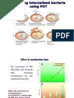 PDT-Intracellular pathogen targeting