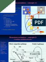 Hemostaza Secundara – Concepte (1)