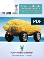 Corn to Ethanol Retrospect's and Prospects