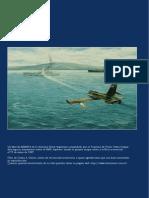 Aviación Naval, A 25 AÑOS DE LA GUERRA DEL ATLÁNTICO SUR