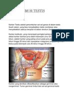 Askep Tumor Testis