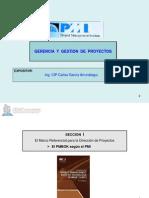 Gerencia y Gestión de Proyectos