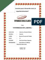 Monografia de Laboral Terminado Intermediacion