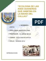 Ecologia de Las Aves Guaneras Que Habitan en La Bahia Del Callao