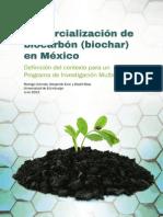 Comercializacion de Biochar en Mexico
