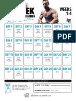 Gethin 12 Week Calendar
