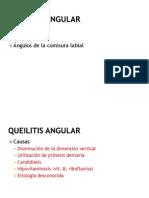19 Queilitis Angular