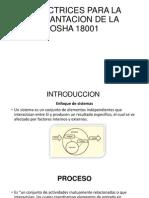 Directrices Para La Implantacion de La Osha 18001