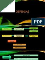 defensas (1).pptx