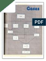 Pacerizu Publicaciones Los Gases