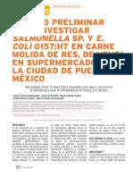 Las Bacterias en La Carne Vendida en Puebla