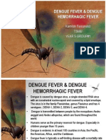 Dengue Fever & Dengue Hemorrhagic Fever