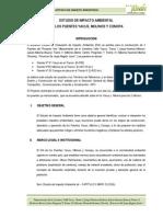 Estudio de Impacto Ambiental Puente Yunan