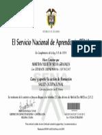 Diploma Curso Salud Ocupacional