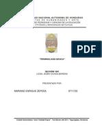 terminologia de curriculum.docx