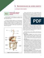 Anexo Anatomofisiologia Del Sistema Digestivo