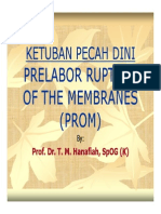 Rps138 Slide Ketuban Pecah Dini Prelabor Rupture of the Membranes
