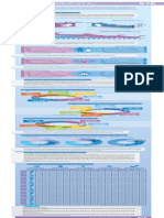 Infografia Estadisticas Vitales 13 2014