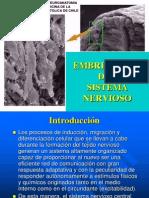 8 Embriología Sn