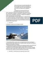 A Atividade Salineira No Brasil Se Caracteriza Por Uma Grande Dependência Do