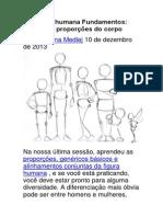 Anatomia Humana Fundamentos- Avançado Proporções Do Corpo