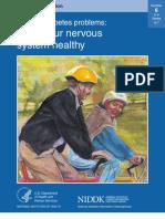LP PDP6 Nervous System Healthy T